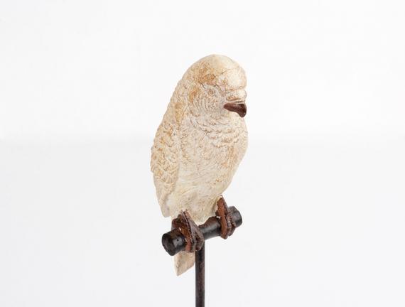 Biblo Papağan
