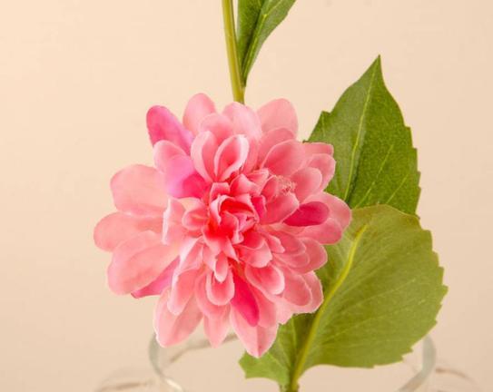 Dekoratif Yapay Çiçek Pembe Yıldız Çiçeği 30cm