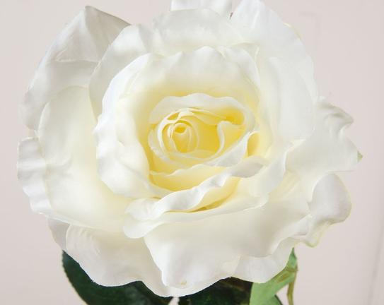 Dekoratif Yapay Çiçek Beyaz Gül 64cm