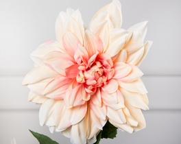 Dekoratif Yapay Çiçek Lila Yıldız Çiçeği 87cm