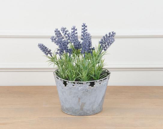 Lemme Lavanta Desenli Saksılı Çiçek