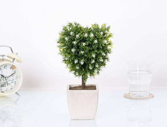 Saksılı Bitki 15x7x26cm