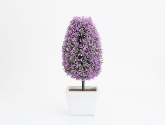 Saksılı Bitki 16 x 16 x 39cm