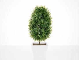 Saksılı Bitki 19 x 19 x 40cm