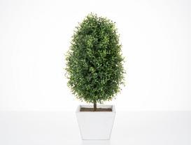 Saksılı Bitki 18 x 18 x 39cm