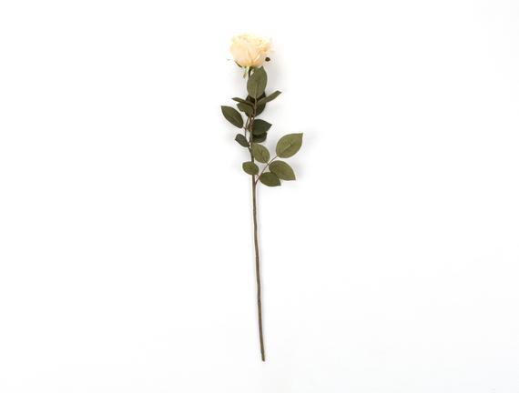 Dekoratif Yapay Çiçek - Krem Gül