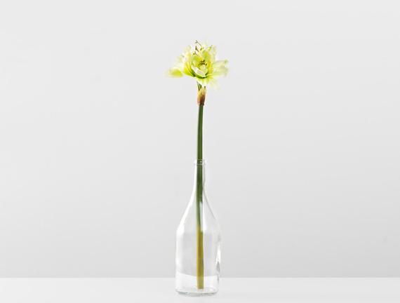 Dekoratif Yapay Çiçek - Yeşil Çoban Çiçeği