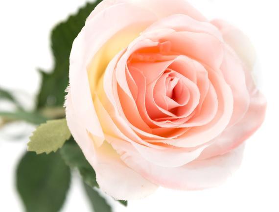 Dekoratif Yapay Çiçek - Pembe Gül