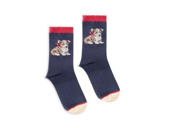Köpek Desenli Kadın Çorabı - Lacivert
