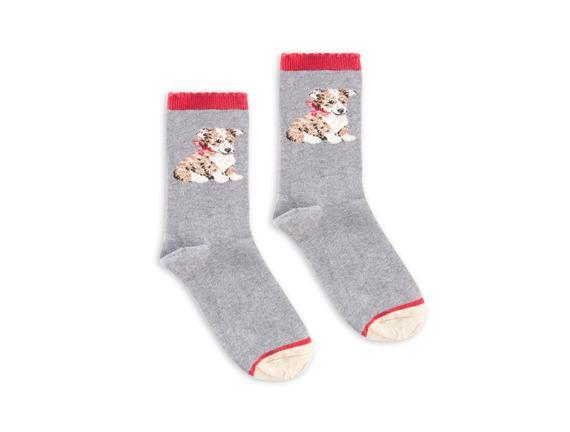Köpek Desenli Kadın Çorabı - Gri / Melanj