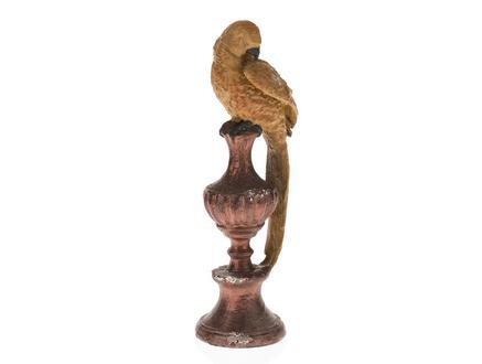 Papağan Biblo