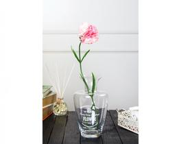 Betta Karanfil Çiçek - Pudra