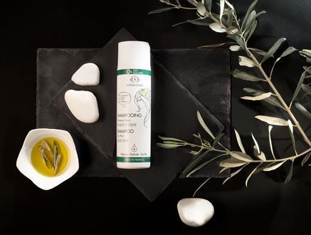 RÉPERTOIRE Kuru ve Yıpranmış Saçlar için Şampuan 250 ml Olive Leaf (Zeytin Yaprağı)