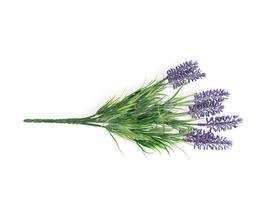 Çiçek - Lavanta