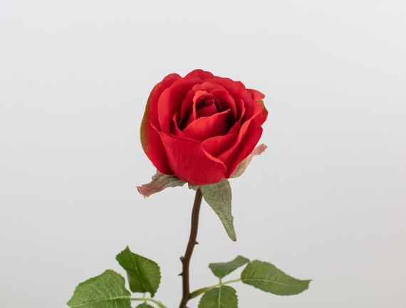La Bambola Gonca Gül - Kırmızı