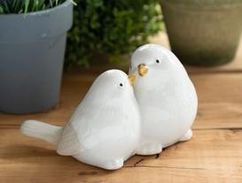 Biblo Kuş - Romantik Güvercinler
