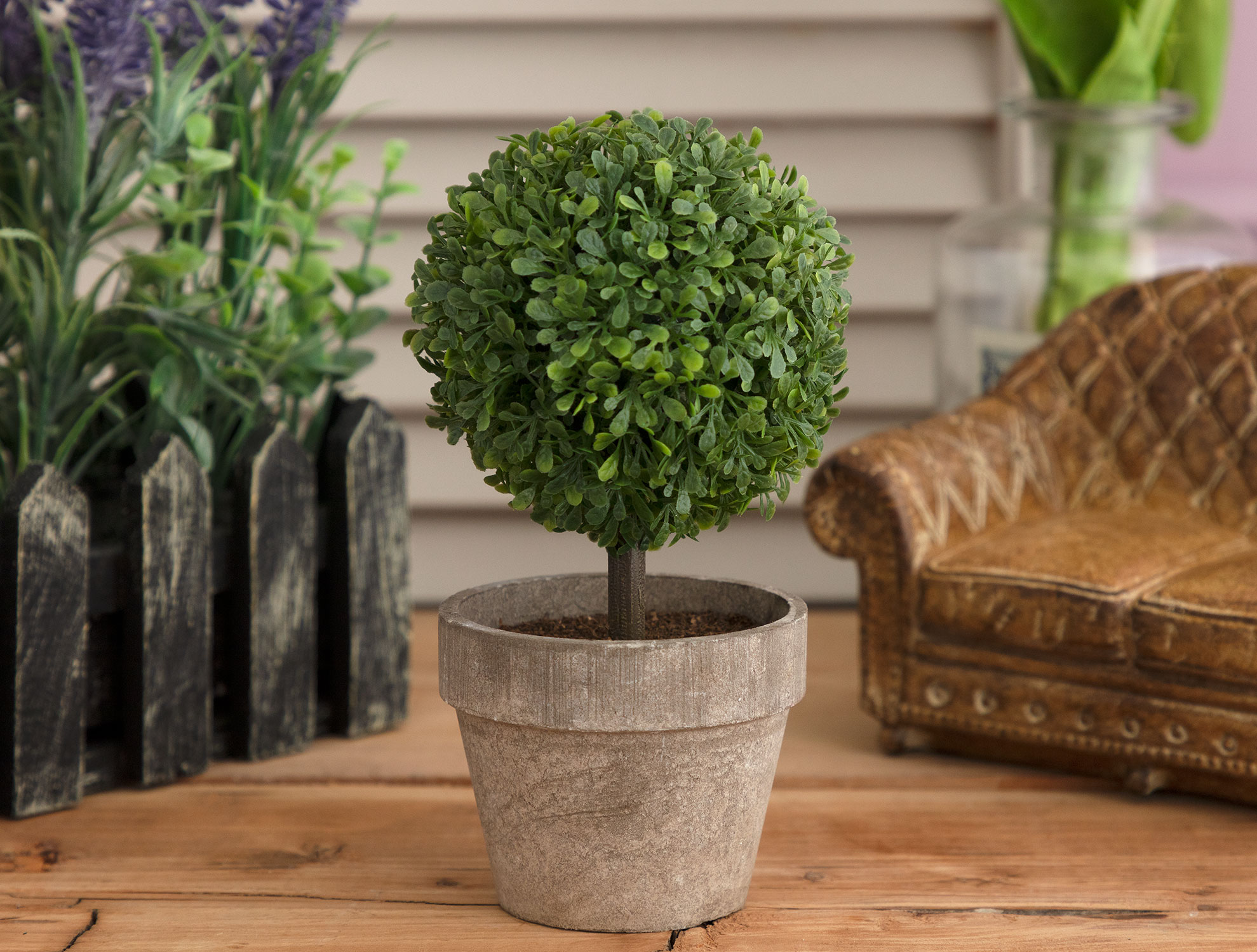 Pot with Plant