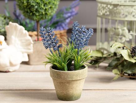 Lemme Lavanta Bambu Saksılı Çiçek