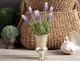 Lemme Lavanta Çiçek