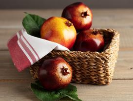 Decorative Pomegranate