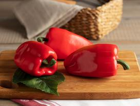 Decorative Burgundy Bell Pepper Large