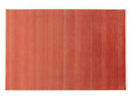 Glare Burgundy Halı - Kırmızı