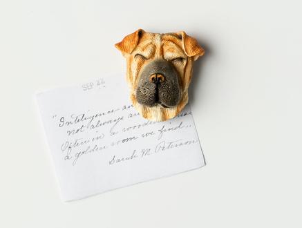 Magnet - Köpek