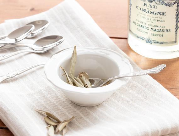 Olive New Bone China Kase