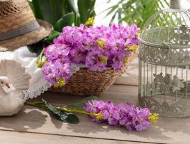 Betta Hezaren Çiçek - Mürdüm