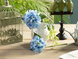 La Bambola Ortanca - Açık Mavi