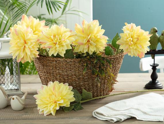 Betta Yıldız Çiçeği - Sarı