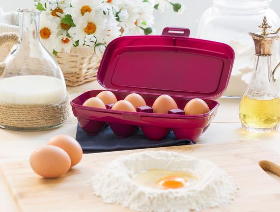 Actuel 8'li Yumurta Kabı - Mürdüm
