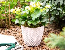 Woven-Pattern Flower Pot Large
