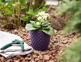 Woven-Pattern Small Flower Pot