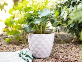 Quilted Pattern Large Flower Pot - Powder