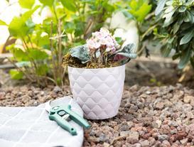 Quilted Pattern Midi Flower Pot - Powder