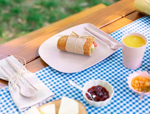 Spring Piknik Seti - Pudra