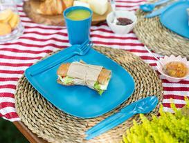 Spring Piknik Seti - Teal Blue