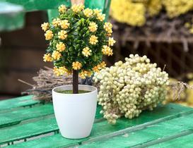 Dareau Saksılı Bitki - Sarı