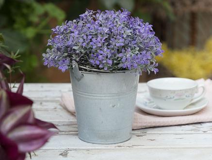 Huette Saksılı Bitki - Lila