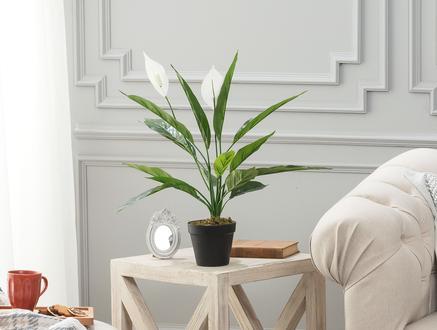 Broche Saksılı Çiçek - Yeşil