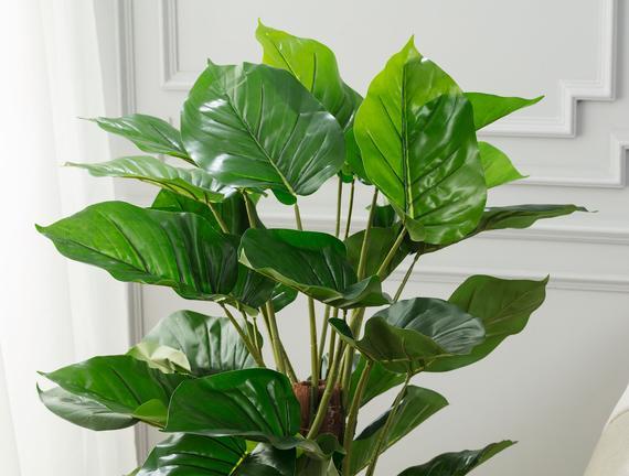 Branche Saksılı Çiçek - Yeşil