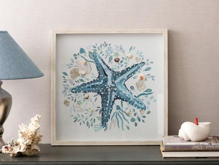 Astre Deniz Yıldızı Tablo