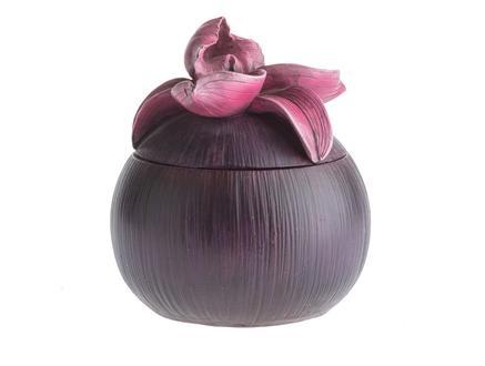 Lotus Kutu