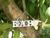 Dekoratif Obje Beach