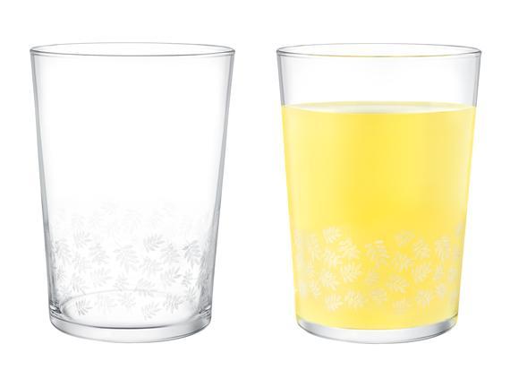 Pierretta-White Leaves 4'lü Meşrubat Bardağı Seti 510 ml