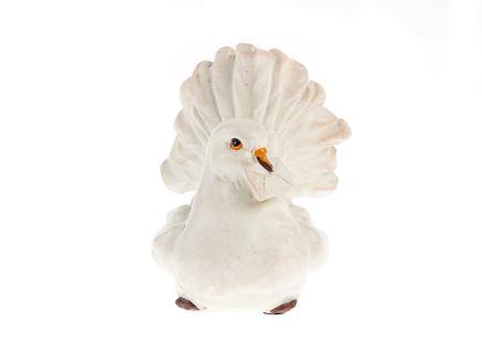 Güvercin Biblo