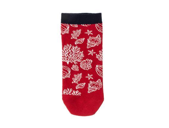 Cherina Kadın 3'lü Patik Çorap
