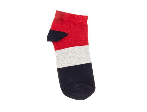 Daisi Kadın 3'lü Patik Çorap