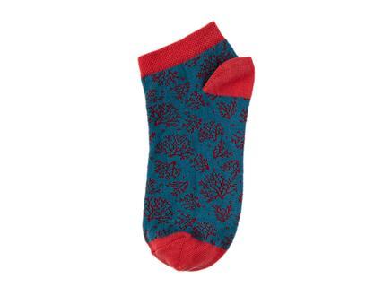Karcsi Kadın 3'lü Patik Çorap